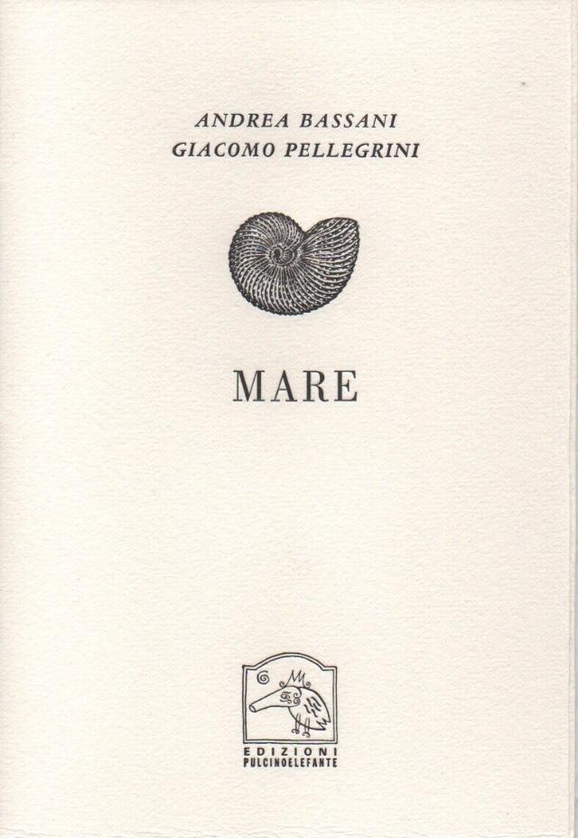 Mare (Edizioni Pulcinoelefante) di Andrea Bassani