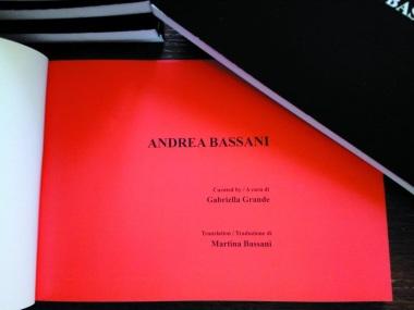 Catalogo d'Arte ANDREA BASSANI (inglese - italiano). A cura di Gabriella Grande. Traduzione di Martina Bassani. Luglio 2018. Fig.3